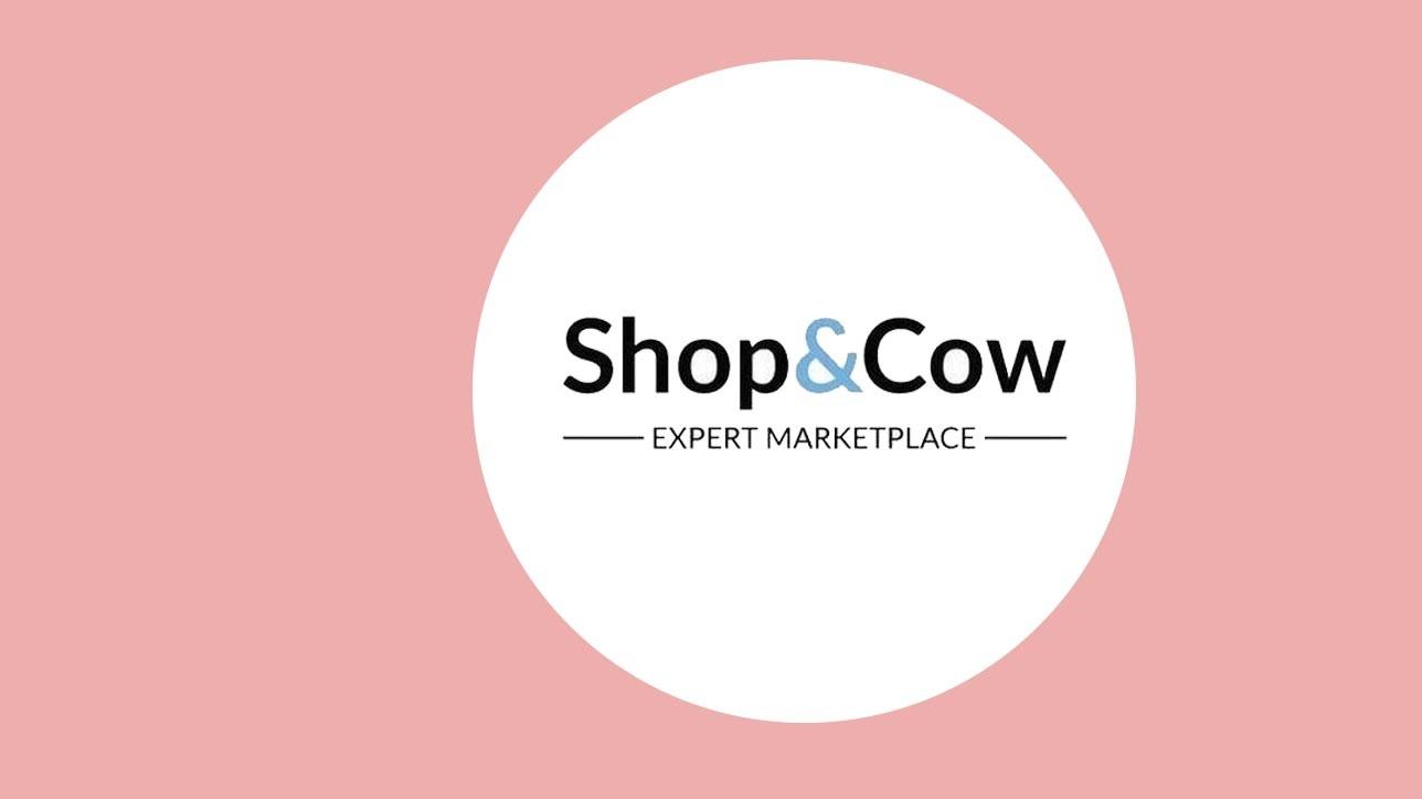 Témoignage : ShopandCow, retour d'expérience sur Sellermania #marketplace